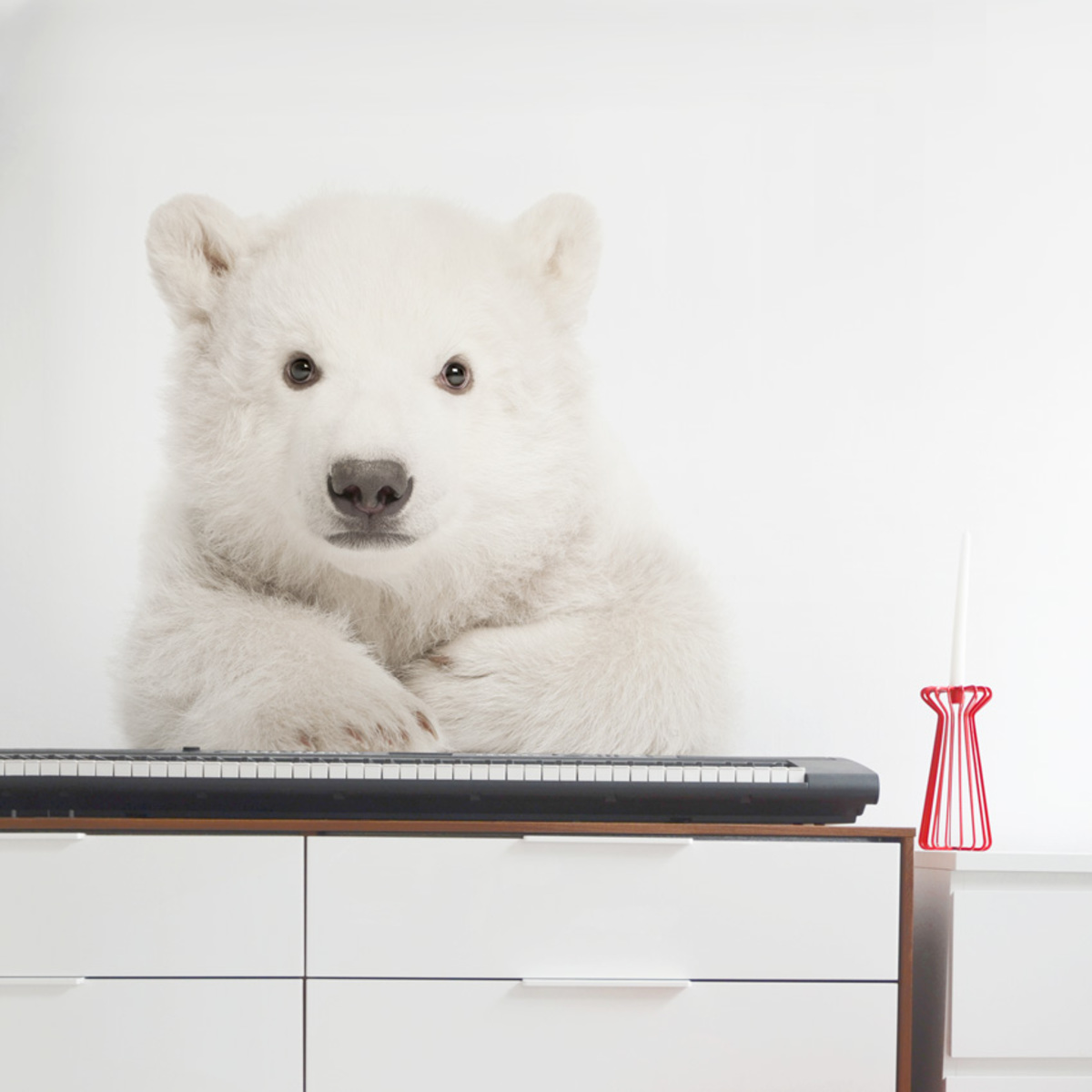 Dekorácia na stenu DEKORNIK - ľadový medveď 58x85